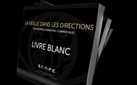 Livre Blanc : La Veille dans les Directions d'entreprises