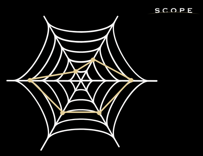 graphique en radar ou en toile d'araignée pour le benchmark concurrentiel